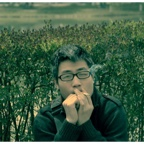 万松岭-桂子